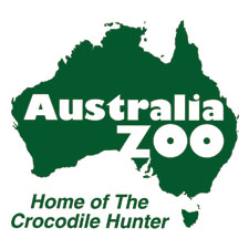 Cub Scouts Camp Out At Australia Zoo